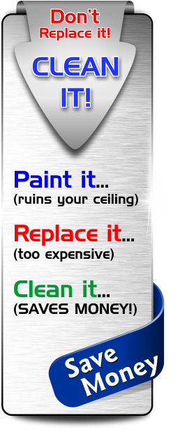 Don't Paint it or Replace it, Clean it for a fraction of the cost